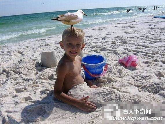 沙滩劲爆囧照雷人不倦